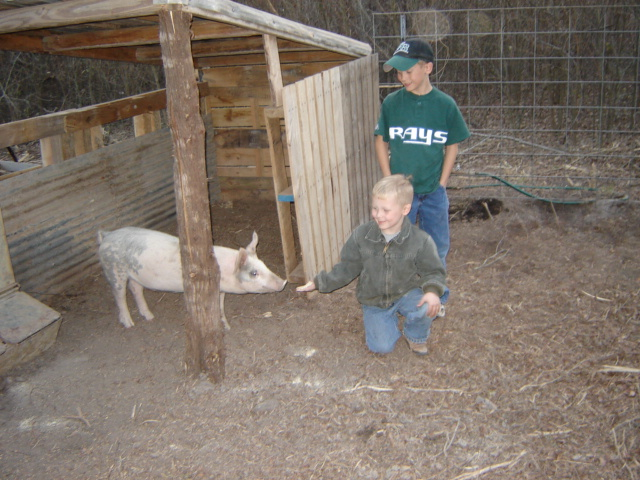 2006, y'all...2006?!? Our sweet babies with Crispy, one of our very first pigs! Not pictured is his sister, Maple ;)